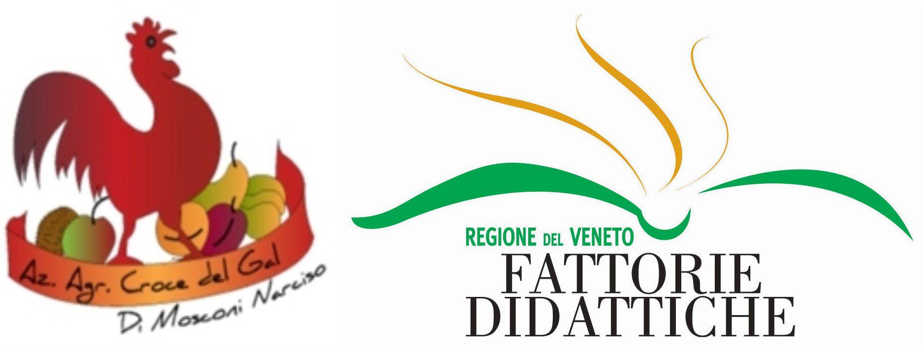 """Azienda agricola  Fattoria Didattica """"Croce del Gal"""""""